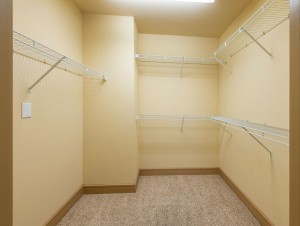 Two Bedroom Apartments for Rent in Houston, TX - Apartment Walk-In Closet (2)